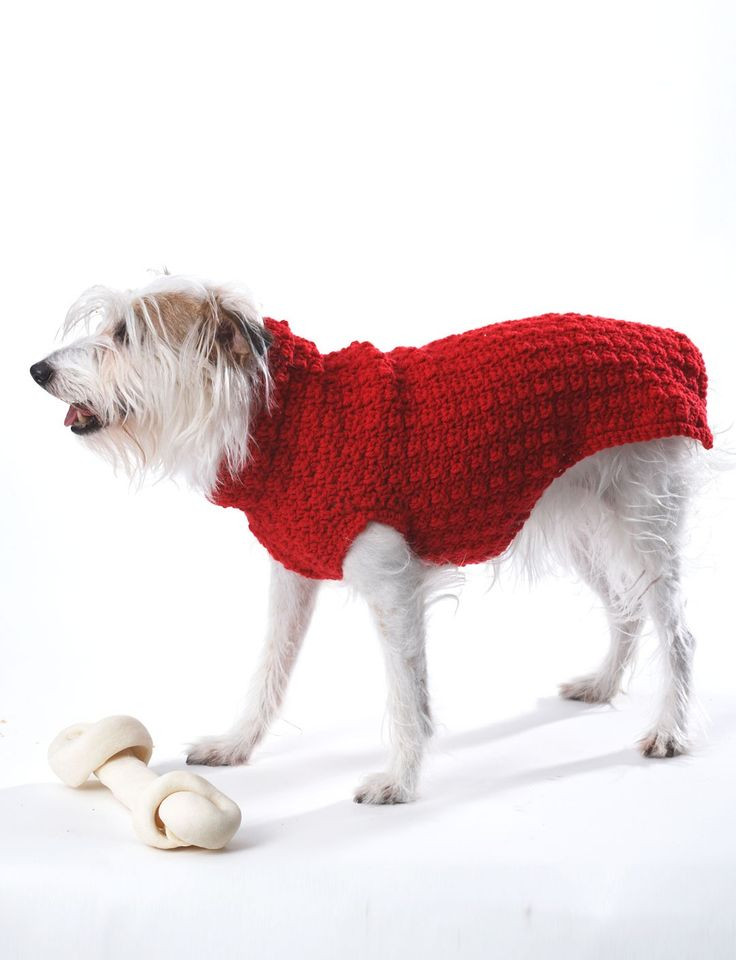Crochet Dog Coat Pattern Awesome Yarnspirations Bernat Crochet Dog Coat Patterns Of Marvelous 41 Photos Crochet Dog Coat Pattern
