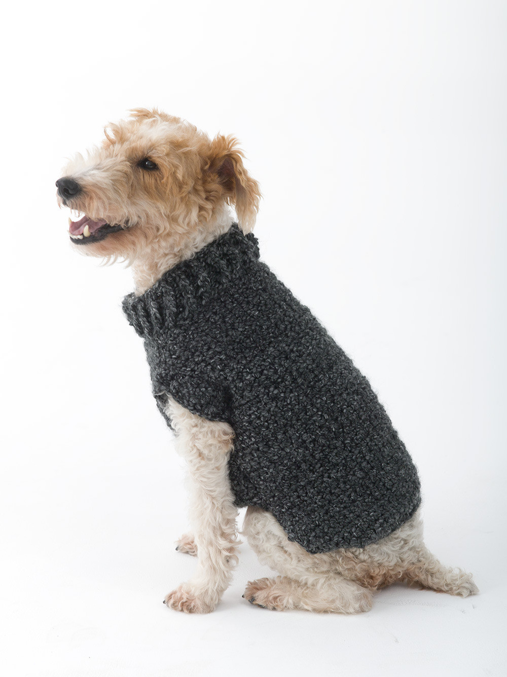 Crochet Dog Coat Pattern Fresh Poet Dog Sweater In Lion Brand Homespun L Of Marvelous 41 Photos Crochet Dog Coat Pattern