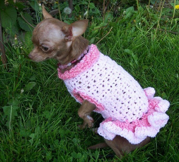 Crochet Dog Coat Pattern Inspirational Etsy Your Place to and Sell All Things Handmade Of Marvelous 41 Photos Crochet Dog Coat Pattern
