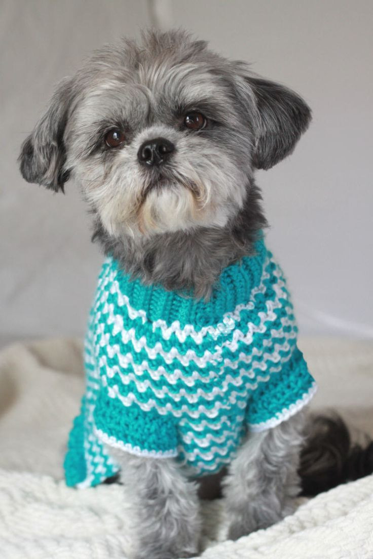 Crochet Dog Coat Pattern Unique Crochet Dog Sweater Patterns to Try Out Of Marvelous 41 Photos Crochet Dog Coat Pattern