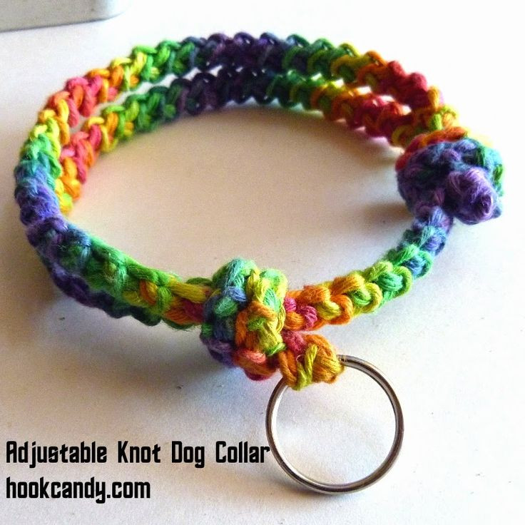 Crochet Dog Collar Unique 17 Best Images About Diy Dog On Pinterest Of Gorgeous 50 Ideas Crochet Dog Collar