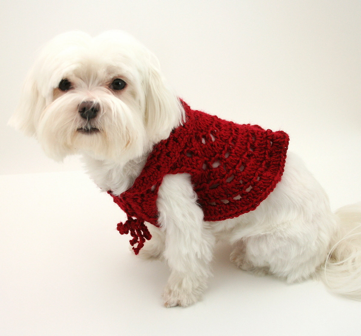 Dog Sweater Crochet Pattern Dog Cardigan