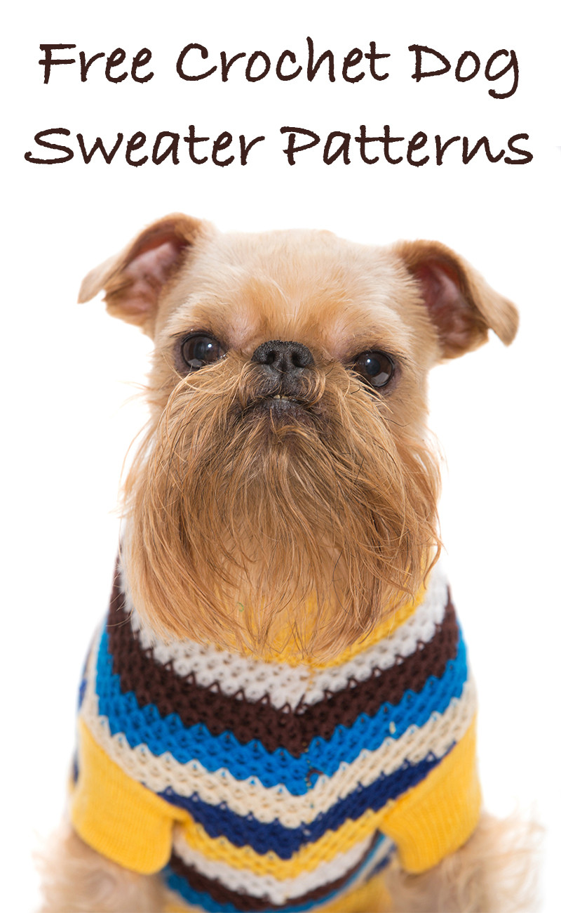 Crochet Dog Lovely A Guide to the Best Free Crochet Dog Sweater Patterns by Of Perfect 50 Images Crochet Dog