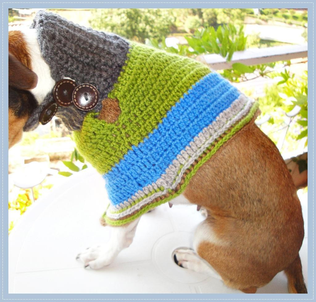 Crochet Dog Sweater Awesome Crochet Dog Sweater Patterns You & Your Pup Will Love Of New 46 Photos Crochet Dog Sweater