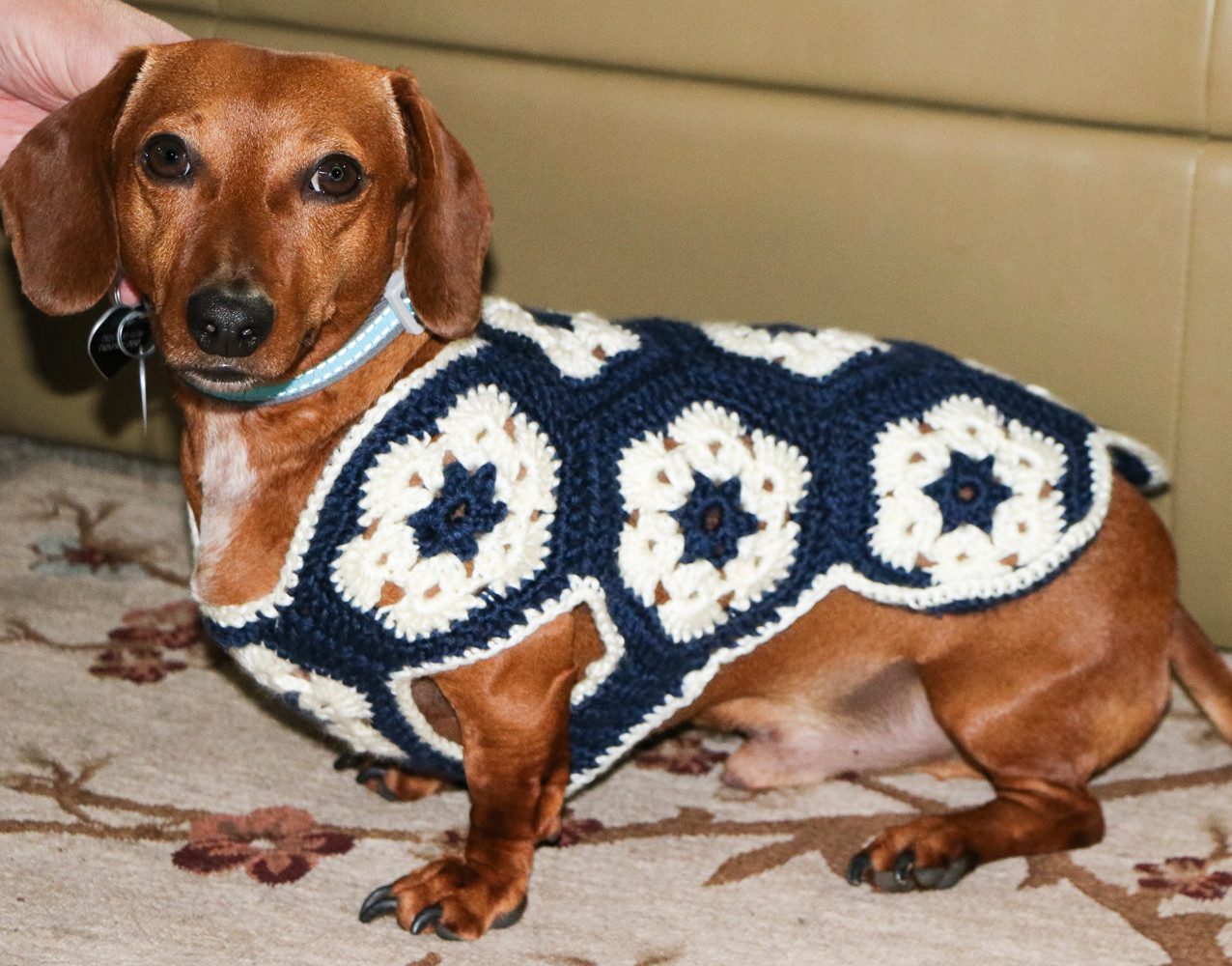 Crochet Dog Sweater Luxury African Flower Dog Sweater – Sewing My Way Through the Usa Of New 46 Photos Crochet Dog Sweater