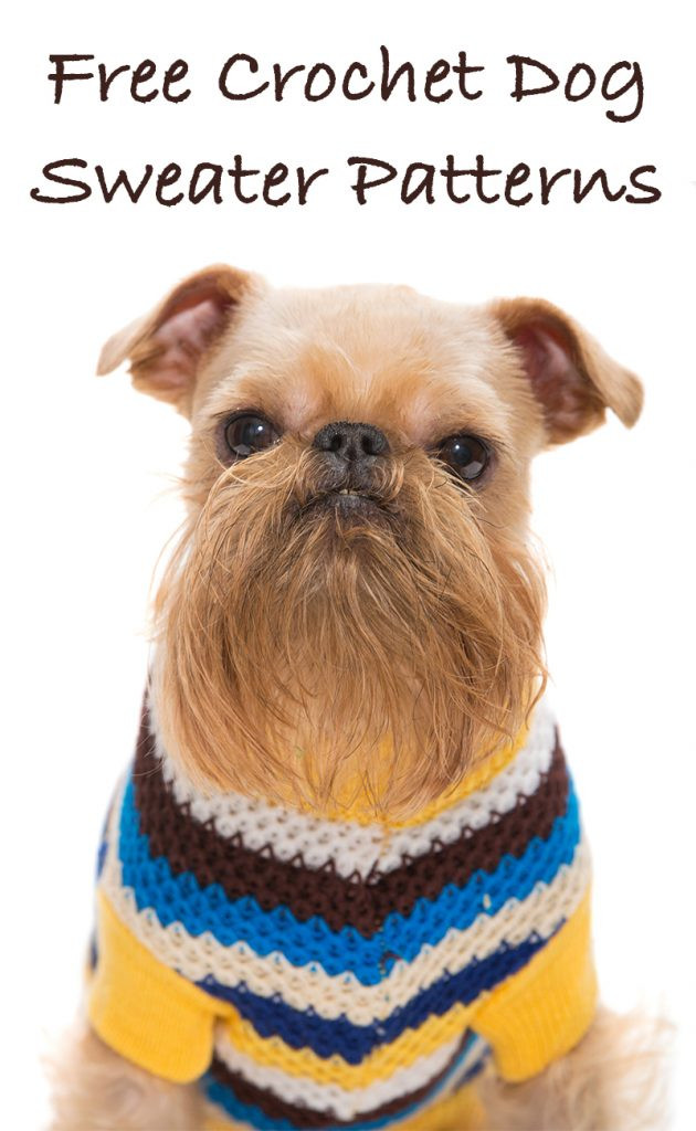 Crochet Dog Sweater New A Guide to the Best Free Crochet Dog Sweater Patterns by Of New 46 Photos Crochet Dog Sweater