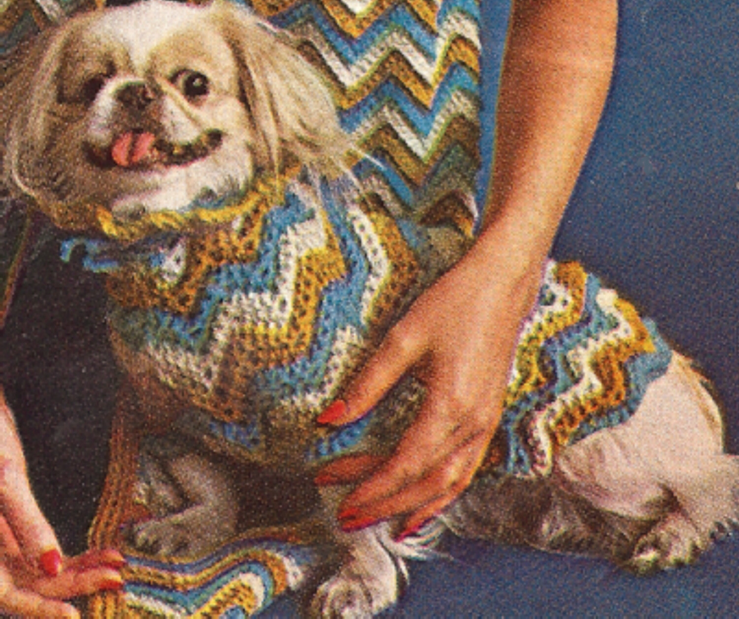 Crochet Dog Sweater Pattern Awesome Vintage Crochet Pattern to Make Dog Sweater Coat Jibber Of Marvelous 47 Images Crochet Dog Sweater Pattern