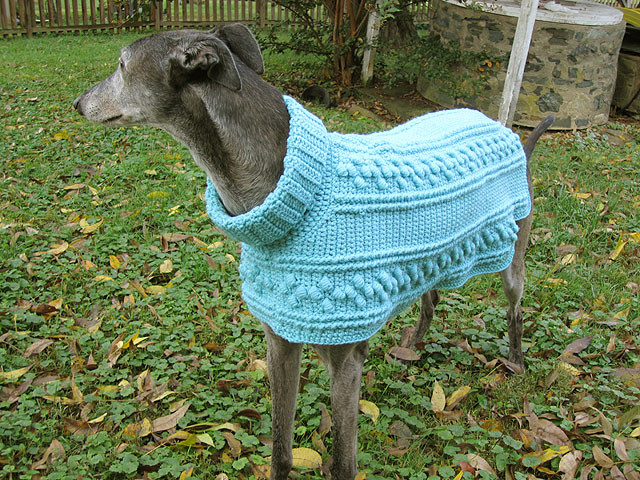 Crochet Dog Sweater Pattern Inspirational Hartwood Roses Crocheted Dog Sweater for the Greyhounds Of Marvelous 47 Images Crochet Dog Sweater Pattern