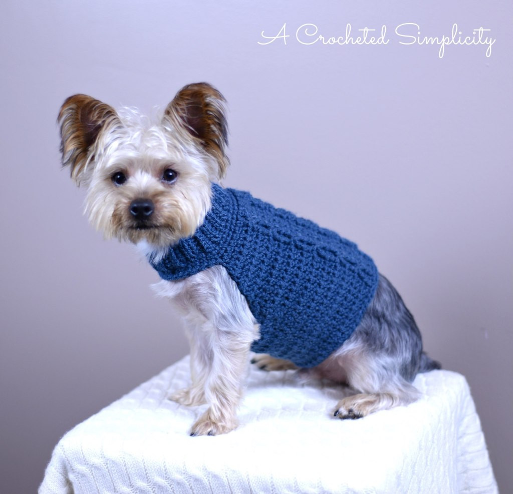 Crochet Dog Sweater Pattern Unique Wilson 1 A Crocheted Simplicity Of Marvelous 47 Images Crochet Dog Sweater Pattern