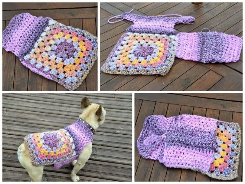 How to Crochet A Dog Sweater Tips And Tricks to Keep Your