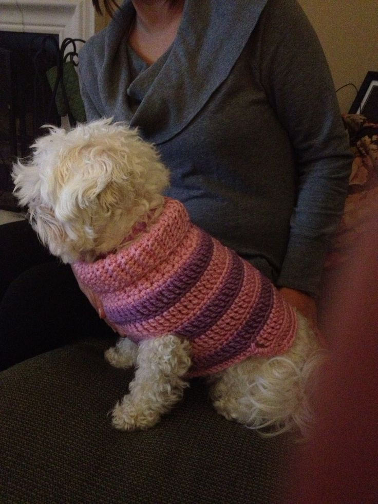 Crochet Dog Sweater with Legs Awesome Small Dog Sweater My Crochet Projects Of Gorgeous 40 Images Crochet Dog Sweater with Legs