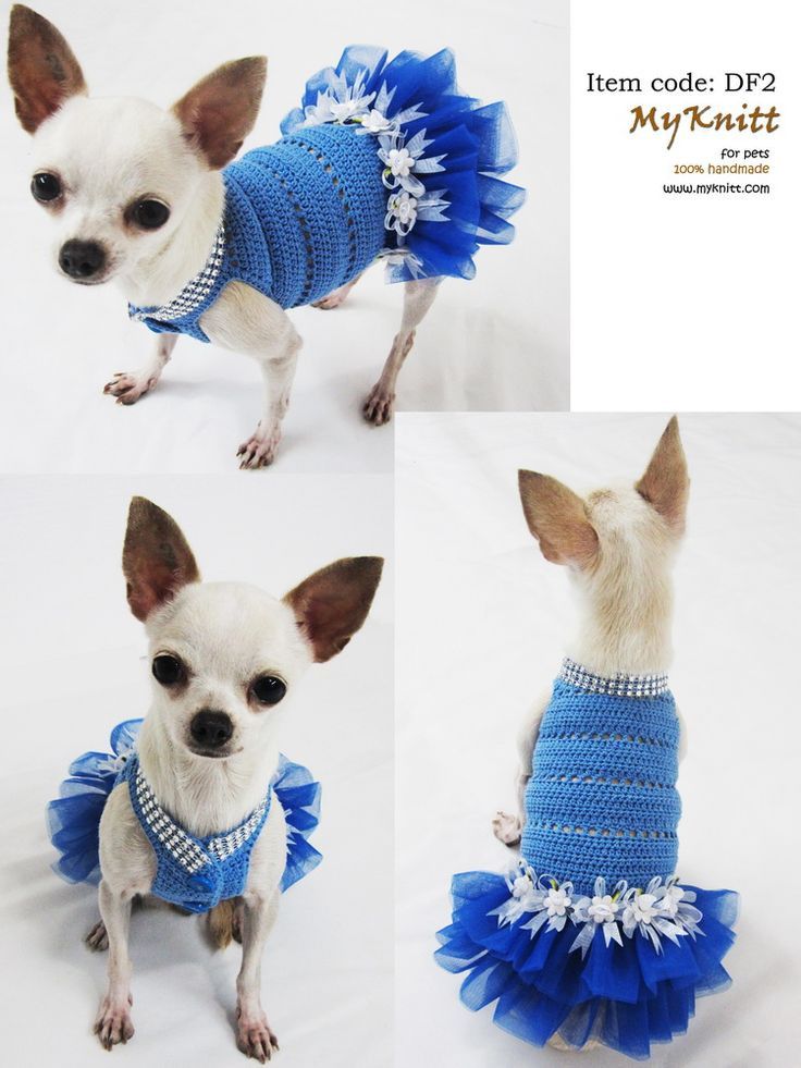 Crochet Dog Unique Crochet Dog Sweater Crochet and Knit Of Perfect 50 Images Crochet Dog