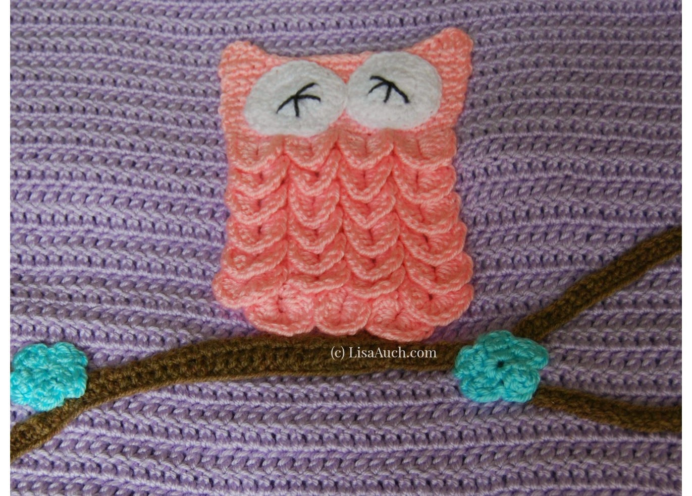 Crochet Owl Blanket Pattern Best Of Free Crochet Pattern Easy Baby Blanket with Optional Owl Applique Of Luxury 42 Models Crochet Owl Blanket Pattern