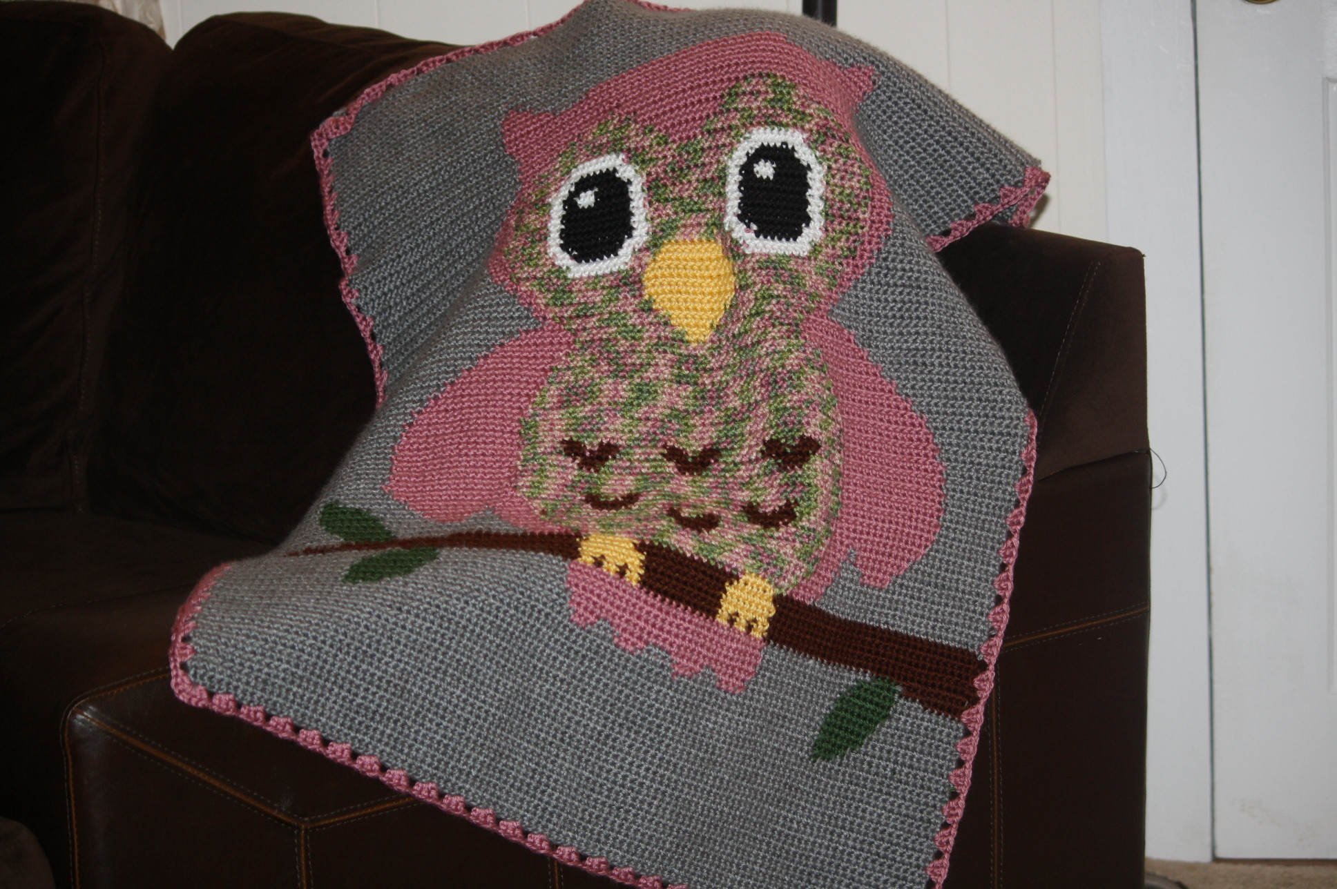 Crochet Owl Blanket Pattern New Crocheted Baby Girl Owl Blanket Of Luxury 42 Models Crochet Owl Blanket Pattern