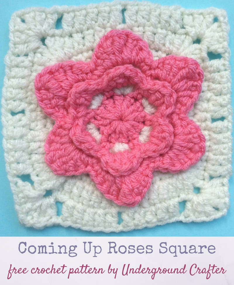 Crochet Rose Pattern Awesome Crochet Pattern Ing Up Roses Square Of Wonderful 49 Images Crochet Rose Pattern