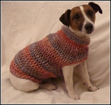 Crochet Small Dog Sweater Awesome Crochet Dog Sweater for Small Dogs Dog Pet S Of Amazing 48 Models Crochet Small Dog Sweater