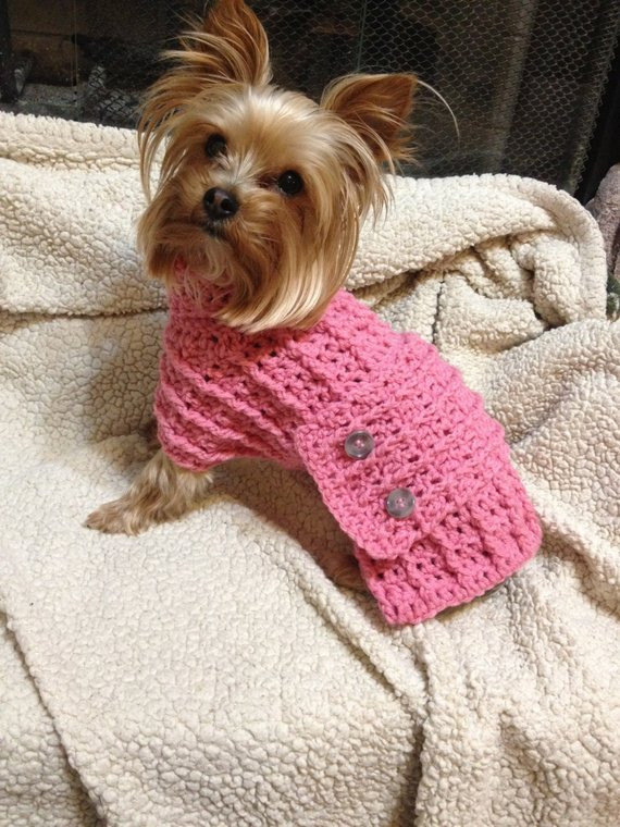 Crochet Small Dog Sweater Best Of Crochet Small Dog Sweater Extra Small Of Amazing 48 Models Crochet Small Dog Sweater