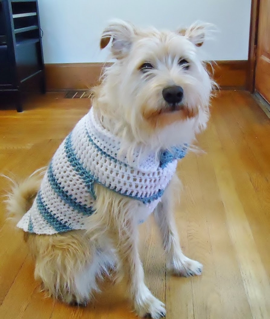 Crochet Small Dog Sweater Elegant E Crochet Addict Spring Striped Dog Sweater with Collar Of Amazing 48 Models Crochet Small Dog Sweater