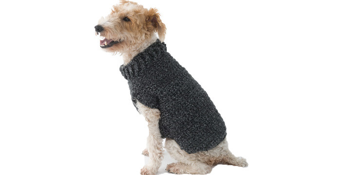 Crochet Small Dog Sweater Fresh National Puppy Day Fashion for Your Furry Friends Of Amazing 48 Models Crochet Small Dog Sweater