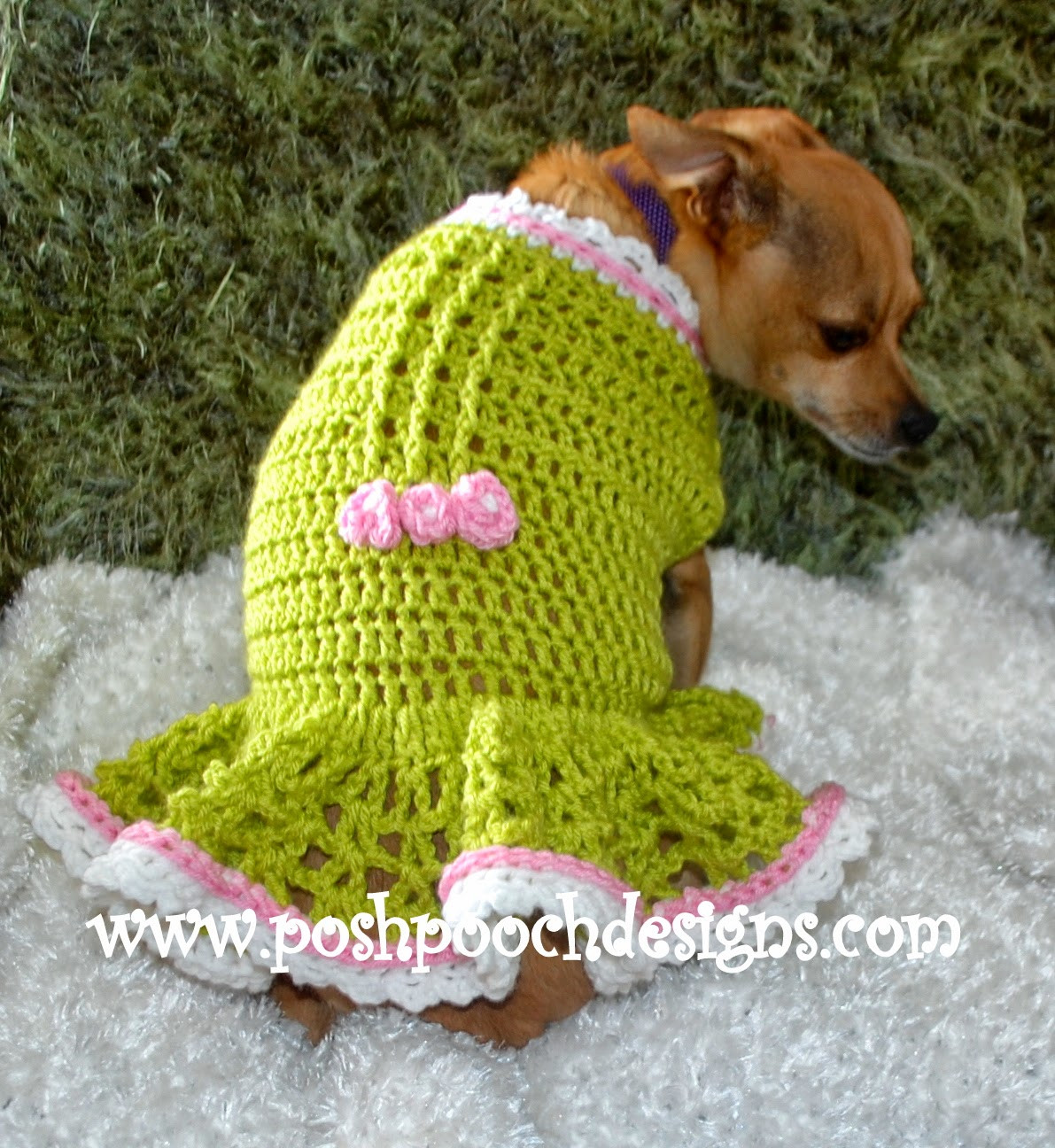 Crochet Small Dog Sweater Inspirational Posh Pooch Designs Dog Clothes New Release Amber Spring Of Amazing 48 Models Crochet Small Dog Sweater