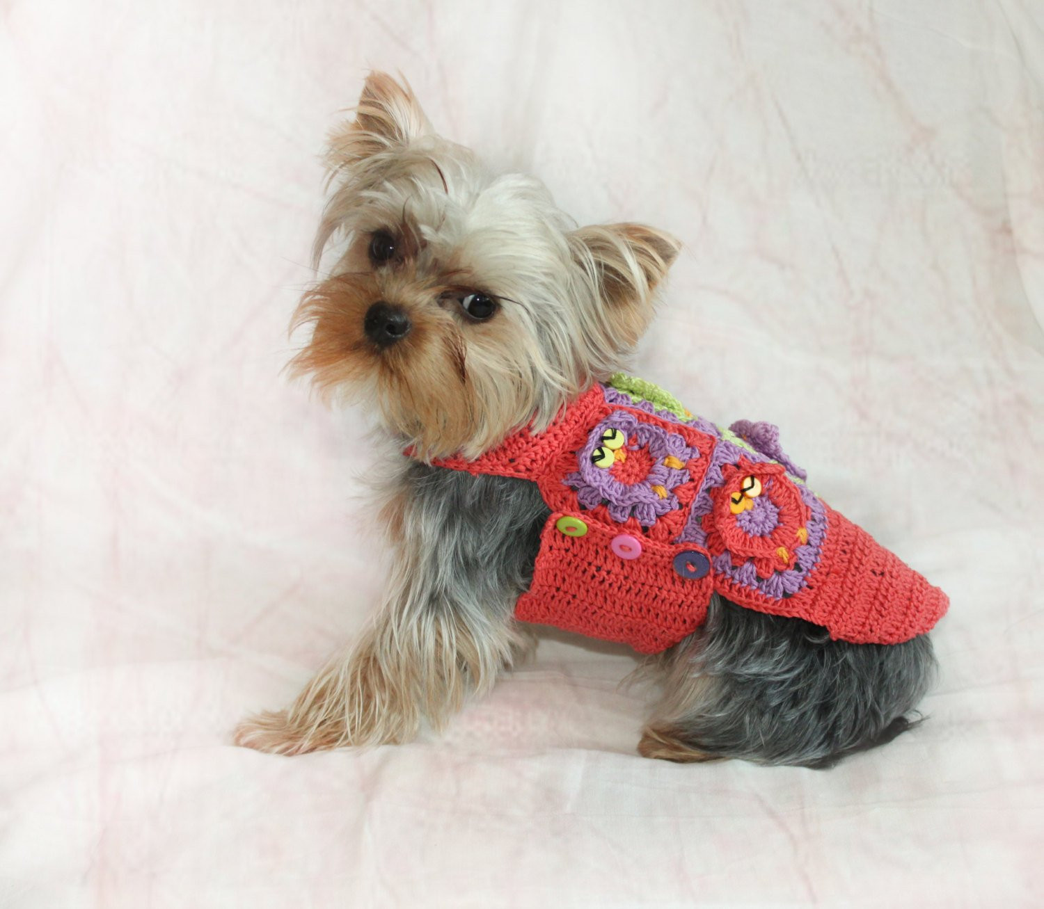 Crochet Small Dog Sweater Lovely Crochet Dog Sweater Crochet Pet Cotton Sweater with Owls Of Amazing 48 Models Crochet Small Dog Sweater