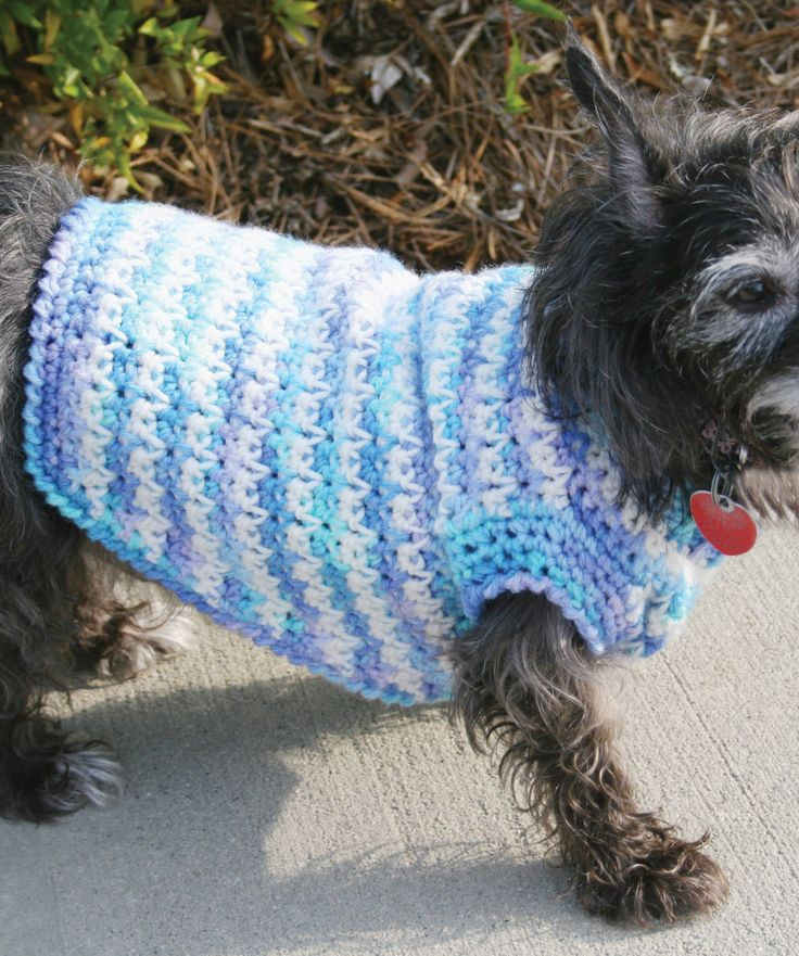 Crochet Small Dog Sweater Lovely Free Crochet Pattern Dog Sweaters Small Dogs Dancox for Of Amazing 48 Models Crochet Small Dog Sweater