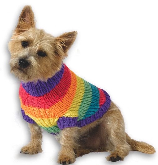 Crochet Small Dog Sweater Pattern Awesome 39 Patterns for Pet Clothing and More Pet Crafts Of Incredible 47 Images Crochet Small Dog Sweater Pattern
