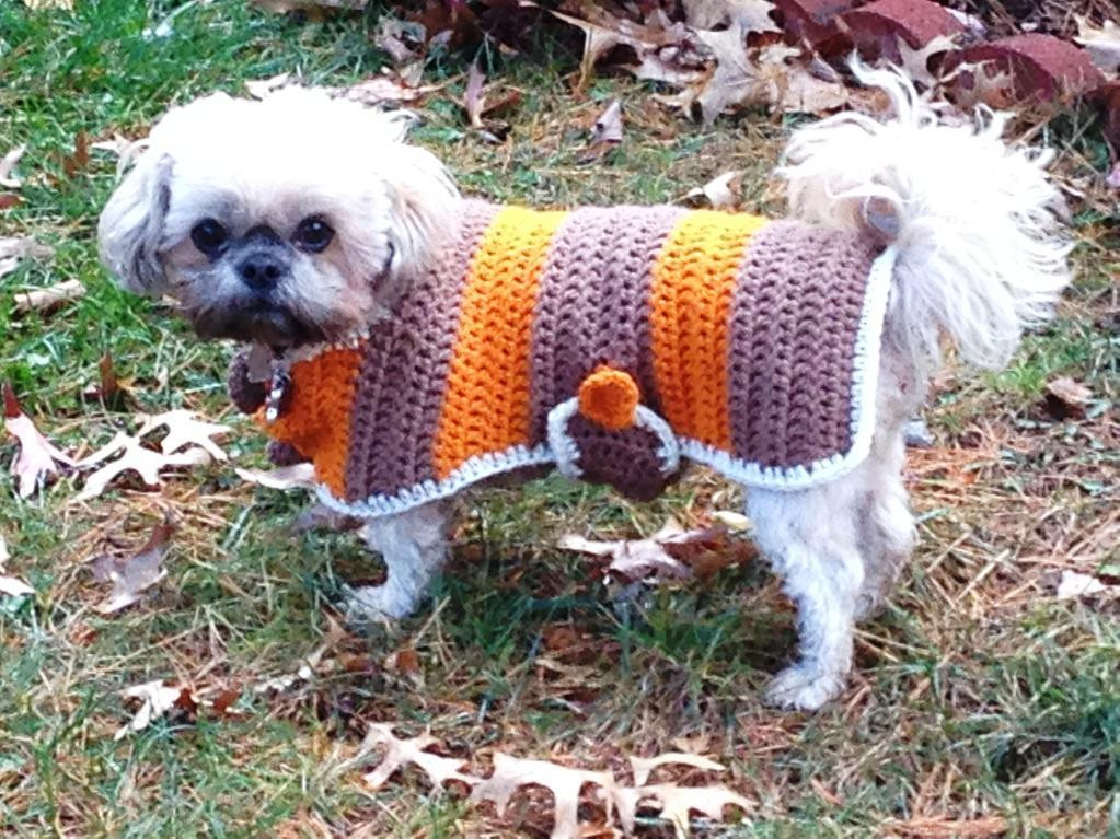 Crochet Small Dog Sweater Pattern Awesome Crochet Dog Sweater Patterns You & Your Pup Will Love Of Incredible 47 Images Crochet Small Dog Sweater Pattern