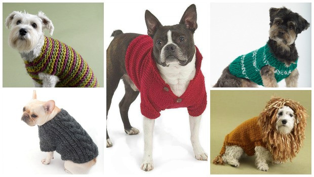 Crochet Small Dog Sweater Pattern Awesome How to Crochet A Small Dog Sweater for Beginners Of Incredible 47 Images Crochet Small Dog Sweater Pattern