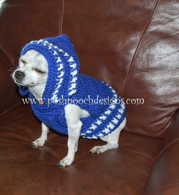 Crochet Small Dog Sweater Pattern Best Of 17 Best Images About Crocheted Pet Wear On Pinterest Of Incredible 47 Images Crochet Small Dog Sweater Pattern