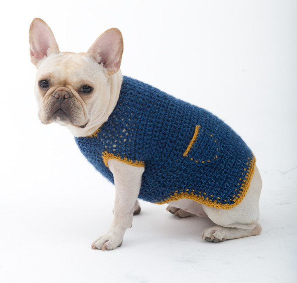 Crochet Small Dog Sweater Pattern Elegant Free Crochet Pattern Dog Sweater Of Incredible 47 Images Crochet Small Dog Sweater Pattern
