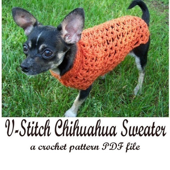 Crochet Small Dog Sweater Pattern Lovely Handmade Crocheted Small Dog Sweater Plus Pattern Giveaway Of Incredible 47 Images Crochet Small Dog Sweater Pattern