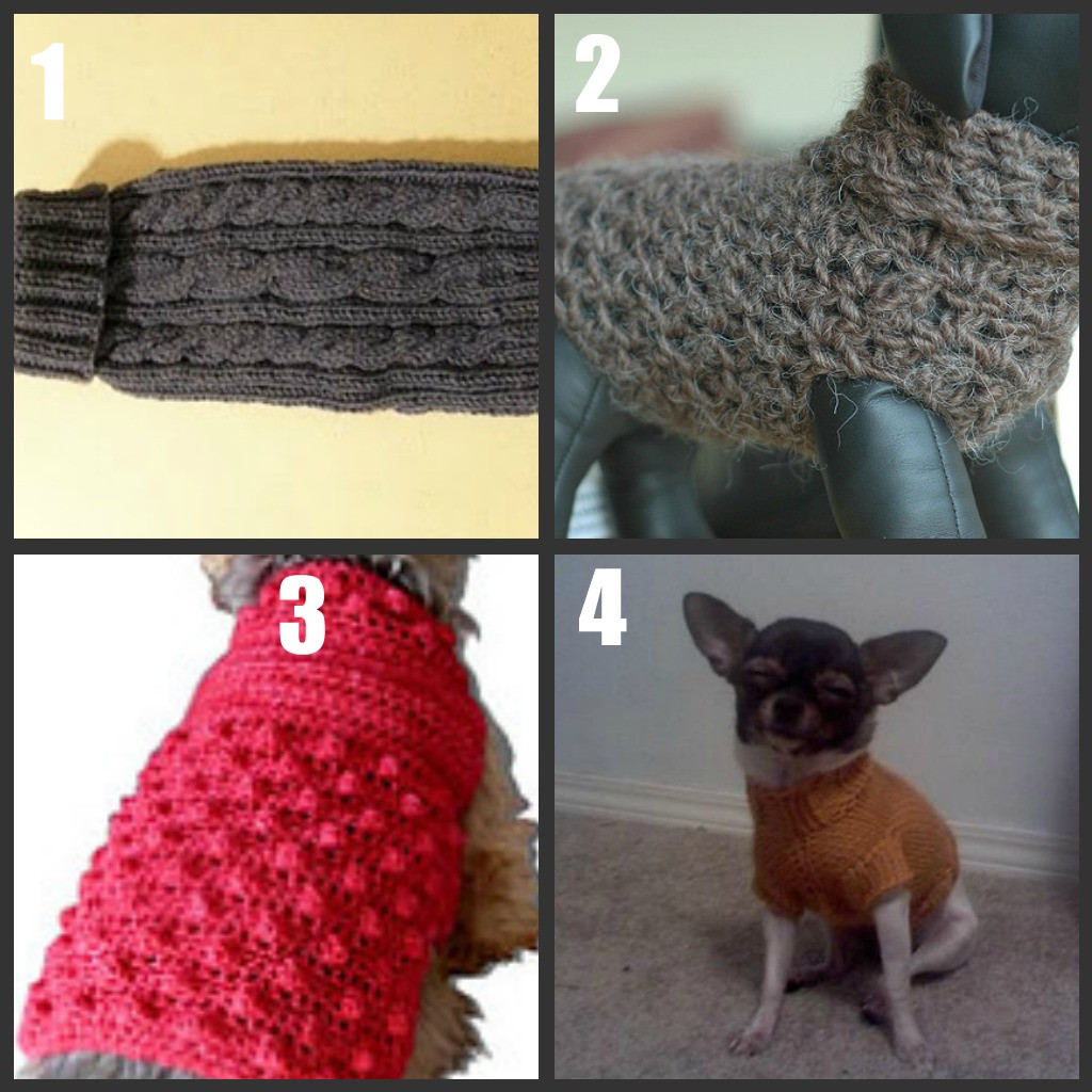 Crochet Small Dog Sweater Pattern Unique Easy Crochet Dog Sweater Tutorial Crochet and Knit Of Incredible 47 Images Crochet Small Dog Sweater Pattern