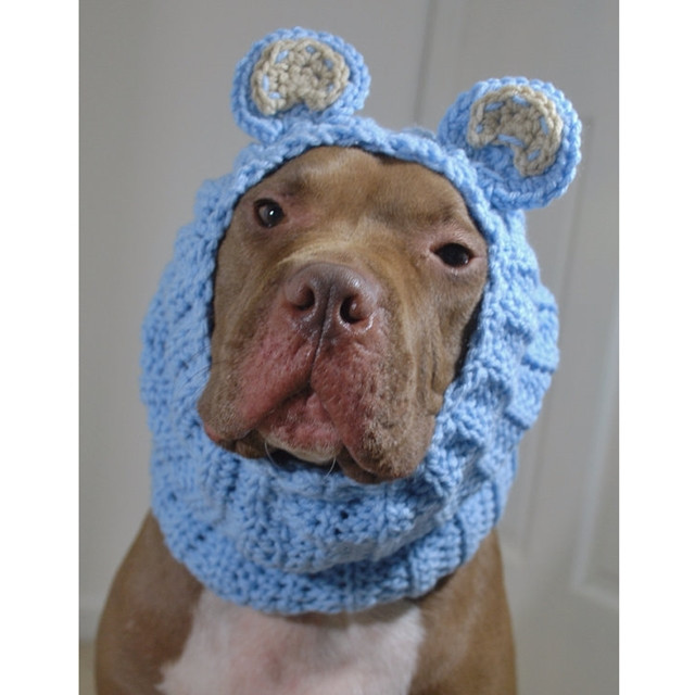 blue bear crochet snood p 1626