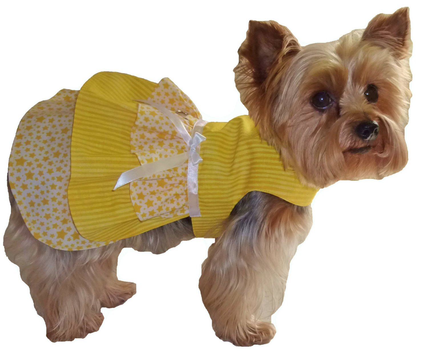 Dog Clothes Patterns New Small Dog Harness Coat Small Get Free Image About Wiring Of Innovative 46 Pics Dog Clothes Patterns