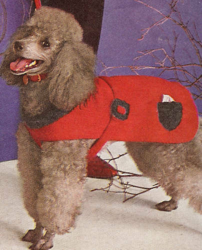 Dog Coat Pattern Free Awesome Vintage Knitting Pattern Dog Sweater Coat Small Med Lg Of Contemporary 42 Models Dog Coat Pattern Free