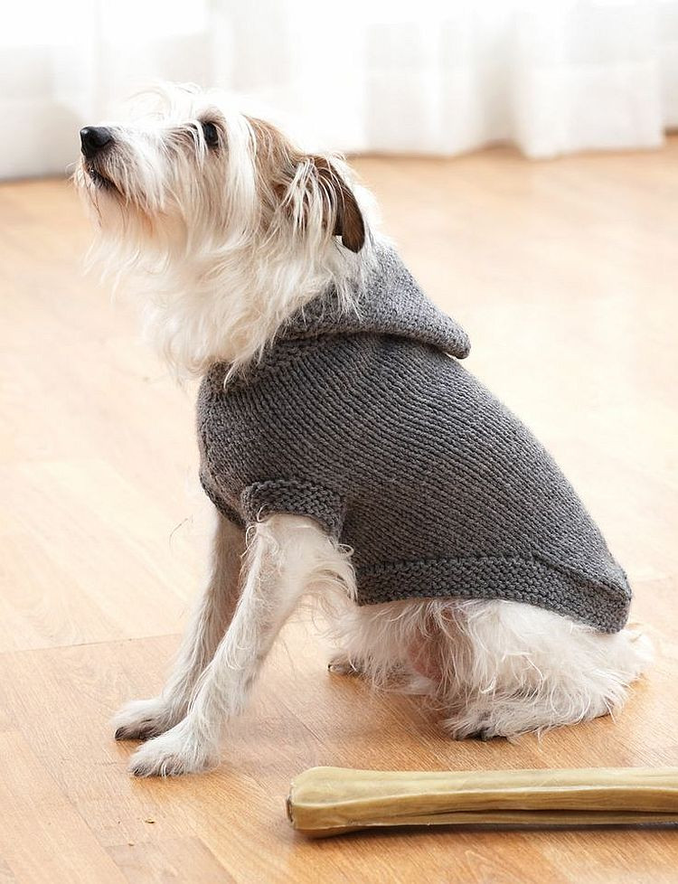 Dog Coat Pattern Free Elegant Fair isle Knitting Projects Experienced Knitters Will Adore Of Contemporary 42 Models Dog Coat Pattern Free