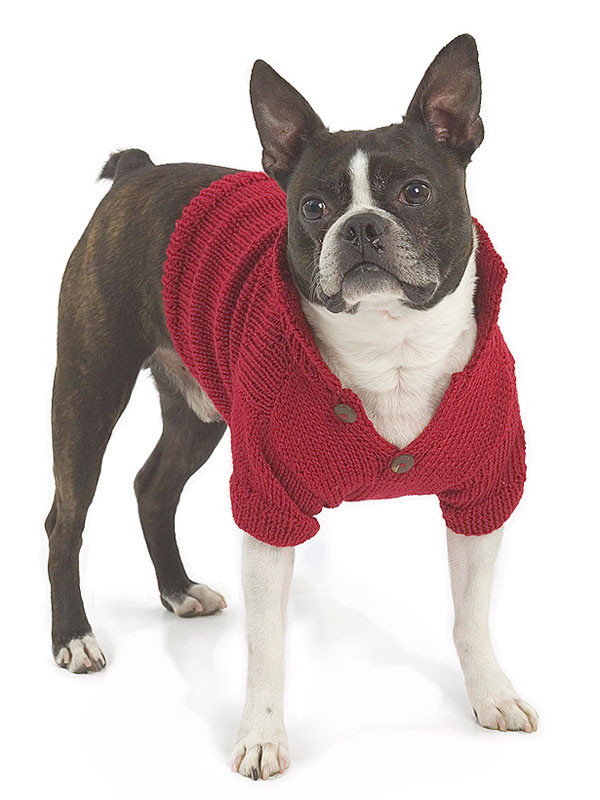Dog Coat Pattern Free Inspirational Miss Julia S Patterns Free Patterns All About Dogs Of Contemporary 42 Models Dog Coat Pattern Free