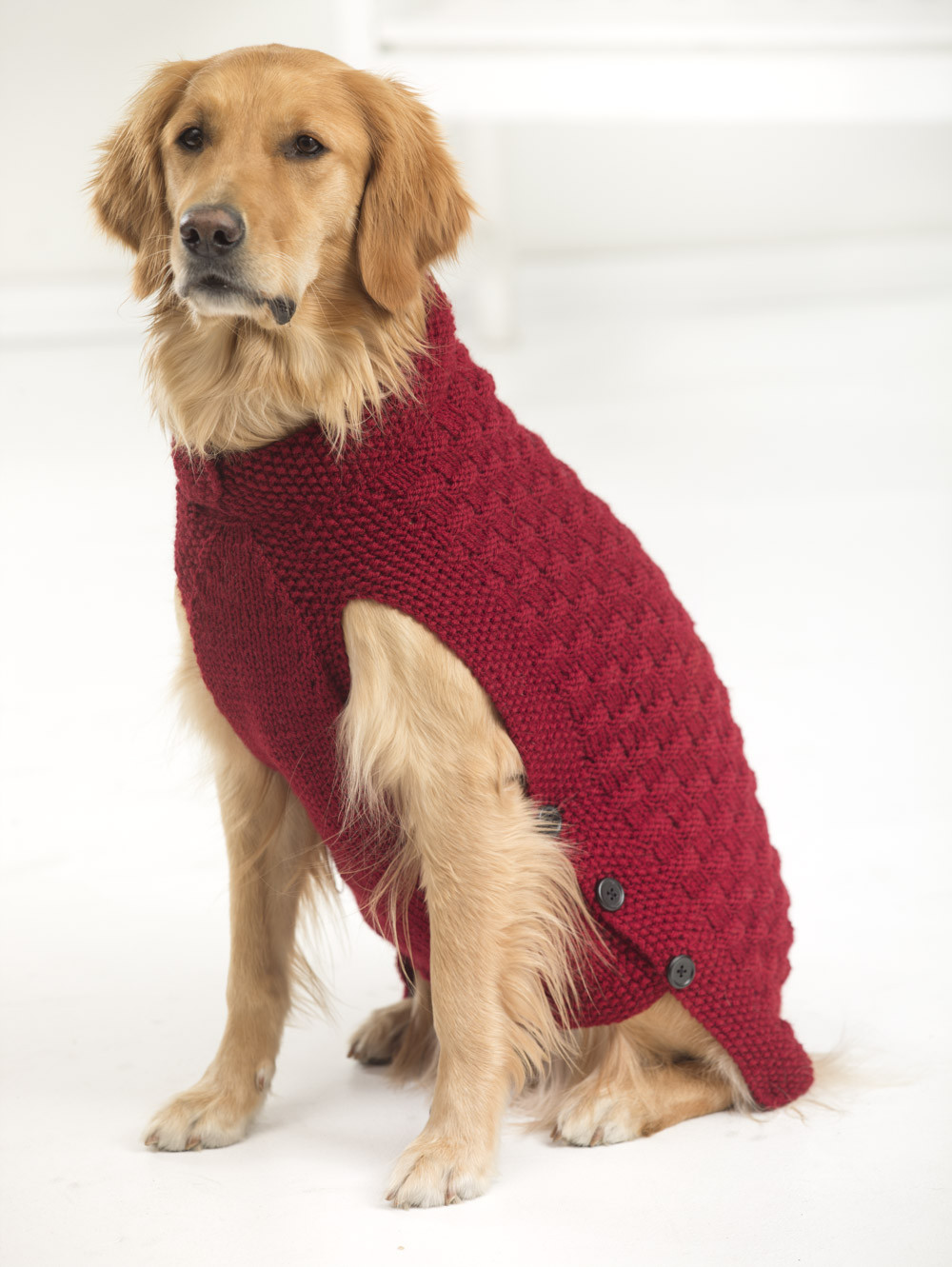 Dog Coat Pattern Free Unique Crochet Dog Sweater Pattern for Large Dogs Crochet and Knit Of Contemporary 42 Models Dog Coat Pattern Free