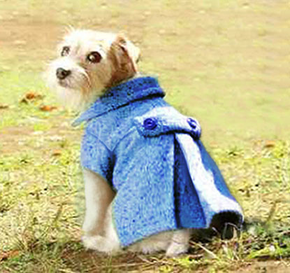 Dog Coat Pattern Fresh 35 Diy Dog Coats Of Contemporary 40 Photos Dog Coat Pattern