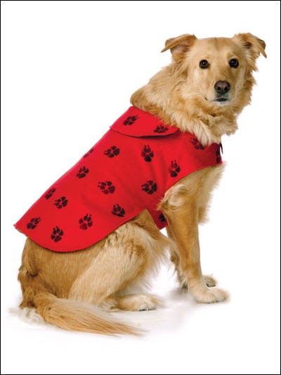 Dog Coat Pattern Luxury Fleece Dog Coat Sewing Pattern Of Contemporary 40 Photos Dog Coat Pattern
