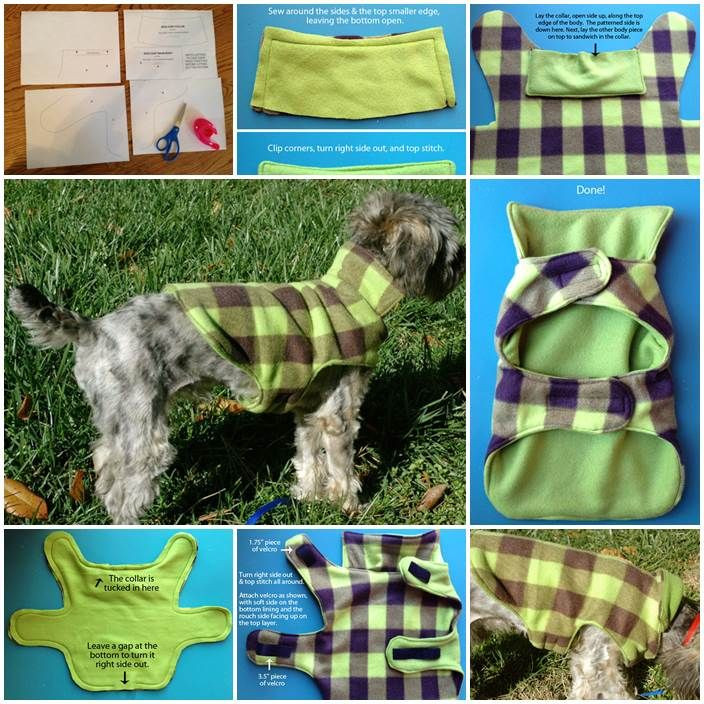 Dog Jacket Pattern Lovely Via Pulsive Craftiness Free Crafts Projects Of Marvelous 45 Photos Dog Jacket Pattern