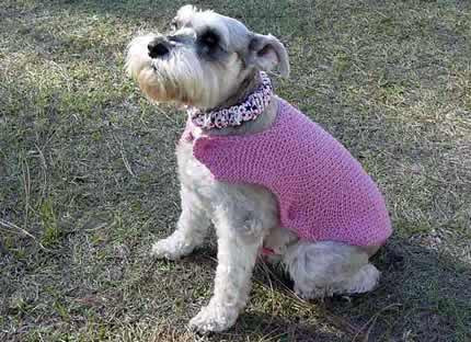 Knit a New Spring Sweater for Your Dog – free patterns