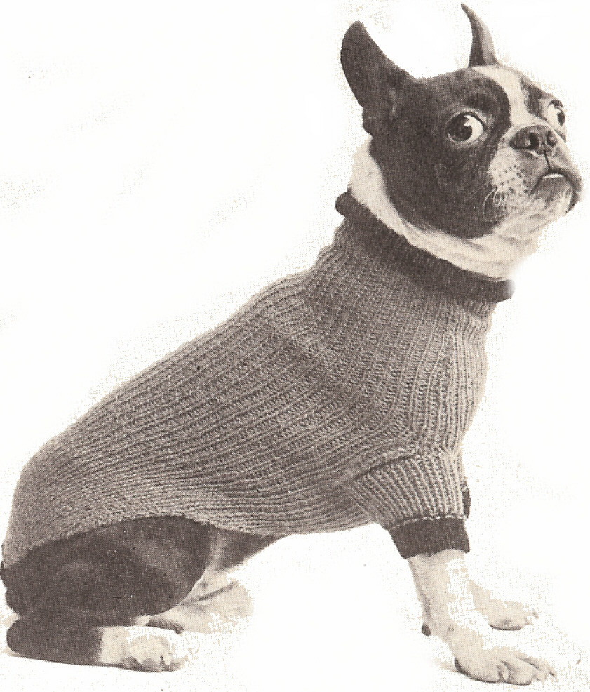 Dog Sweater Knitting Pattern New the Best Sweaters and Coats to Knit for Your Dog – Free Of Superb 38 Pictures Dog Sweater Knitting Pattern