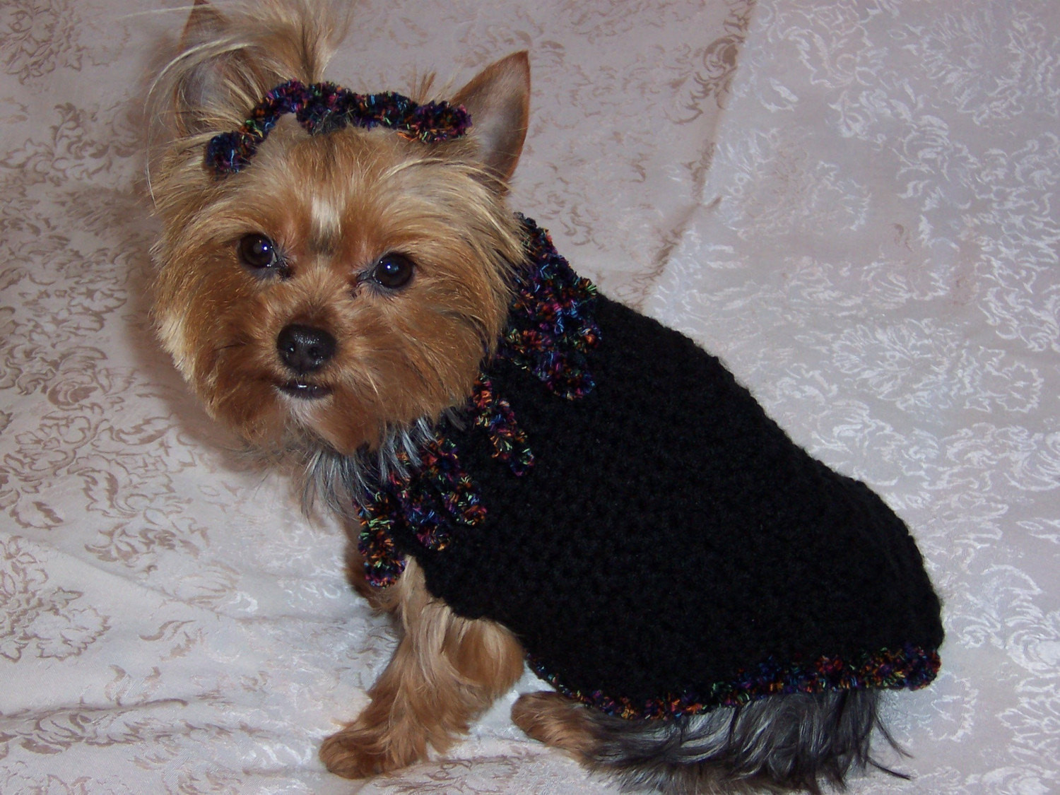 Dog Sweater Patterns Beautiful Curly Q Dog Sweater Crochet Pattern Of Unique 41 Photos Dog Sweater Patterns
