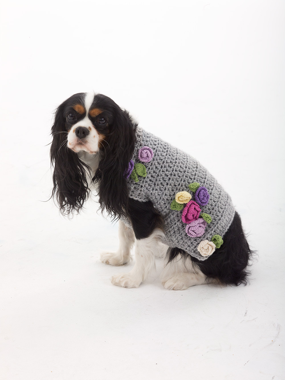Dog Sweater Patterns Best Of Lady who Lunches Dog Sweater In Lion Brand Vanna S Choice Of Unique 41 Photos Dog Sweater Patterns