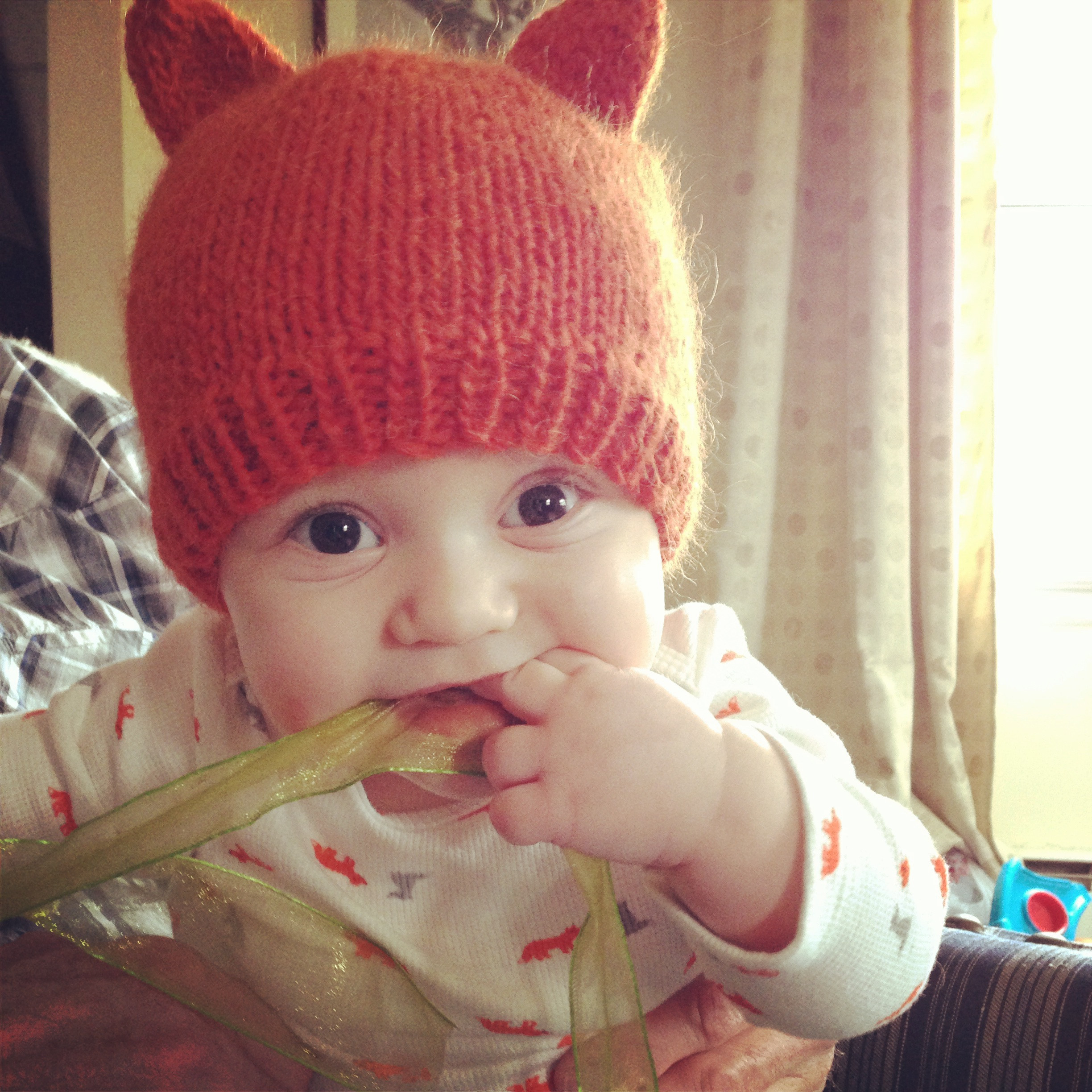 Easy Baby Knitting Patterns Awesome Knit Nat Simple Fox Hat Free Pattern Of Innovative 50 Photos Easy Baby Knitting Patterns