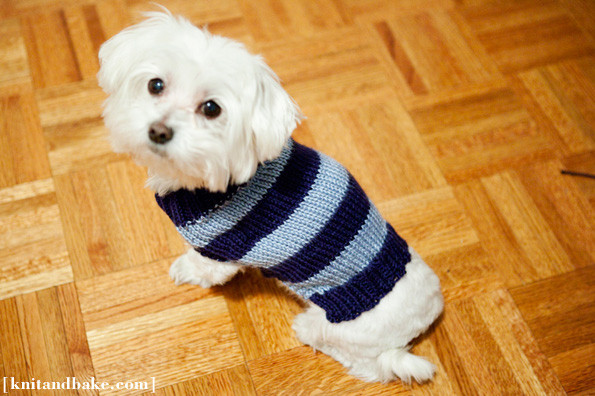 Elegant Adorable Dog Clothes to Make for Your Favourite Pooch Easy Knit Dog Sweater Of Charming 49 Ideas Easy Knit Dog Sweater