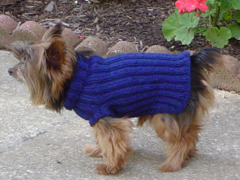 Elegant Knitted Dog Sweater Pattern Frompo Free Knitting Pattern for Dog Sweater Of Amazing 49 Photos Free Knitting Pattern for Dog Sweater