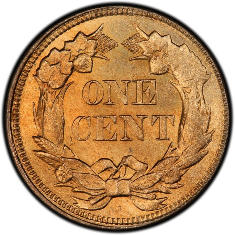 Flying Eagle Cent Awesome 1858 Flying Eagle Pennies Values and Prices Past Sales Of Gorgeous 43 Images Flying Eagle Cent